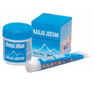Аюрведический крем Кайлаш Дживан (Kailas Jeevan)